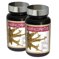 2 x Harpagophytum