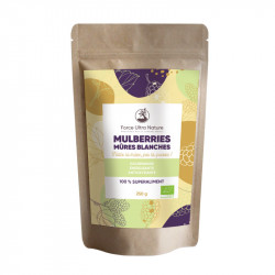 Mulberries (mûres blanches) BIO